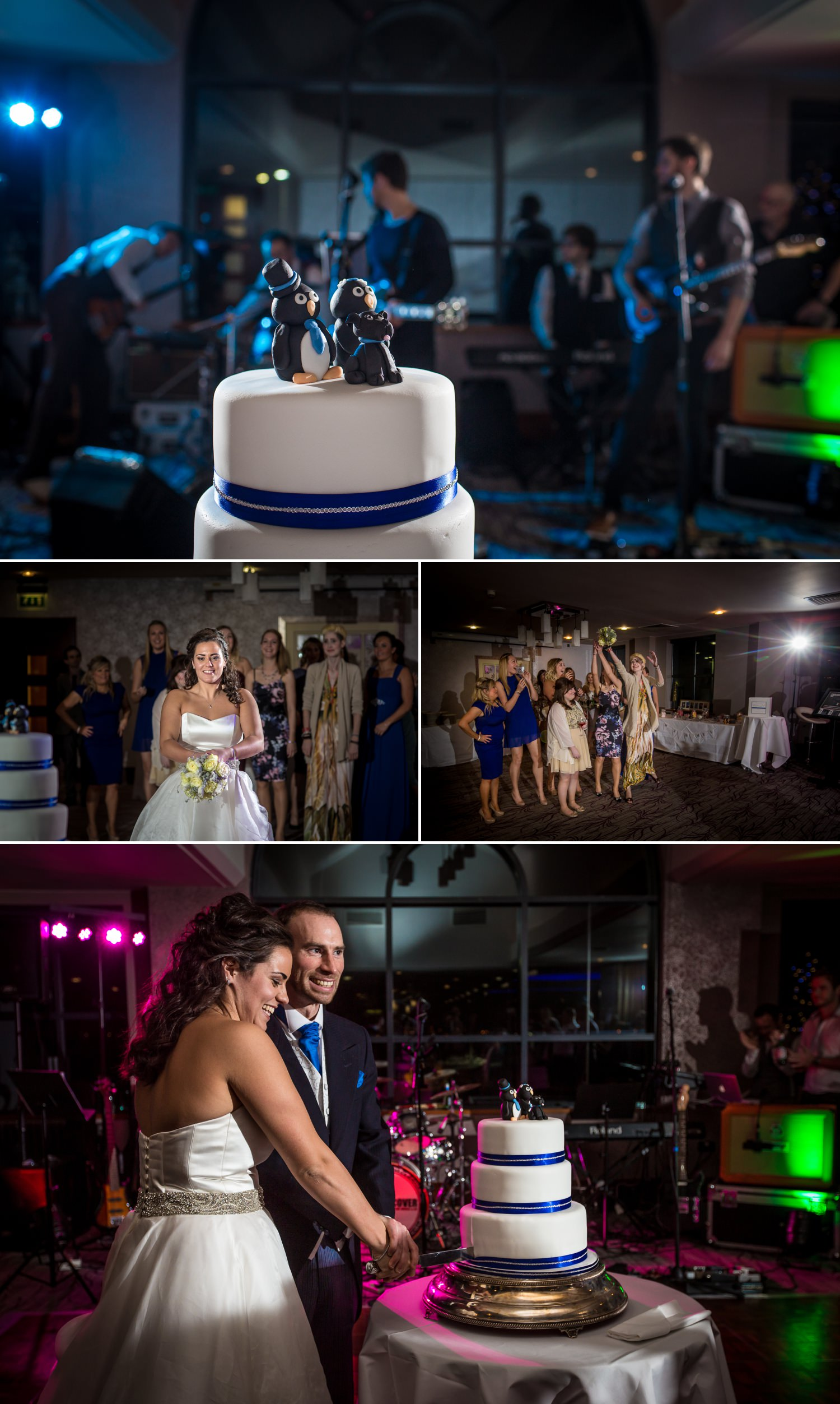 Wedding cake with penguins professional photographed by Marie Lloyd Photography, North Wales