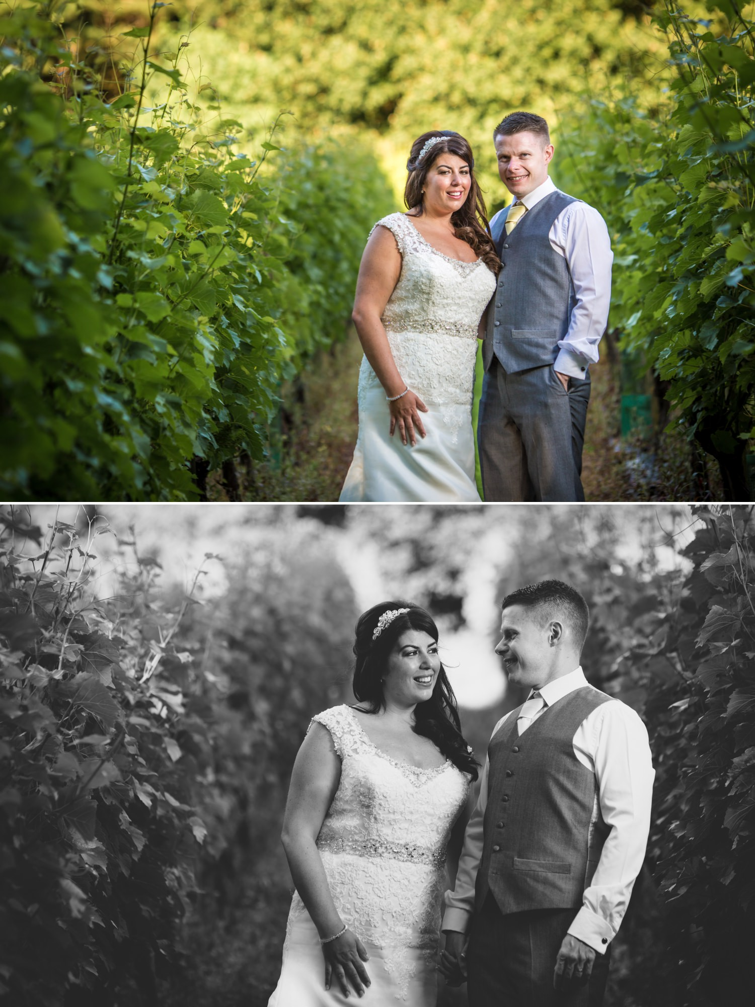 Wedding Photograph of portraits in vineyard at Carden Park