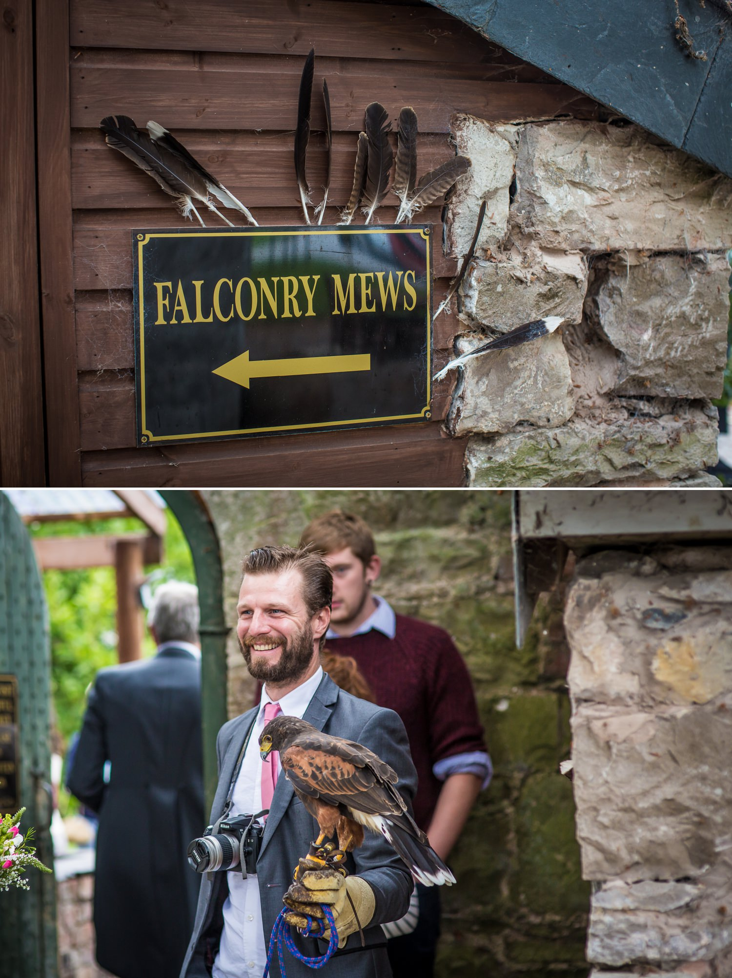 Pentre Mawr Country House Wedding photograph of the falconry