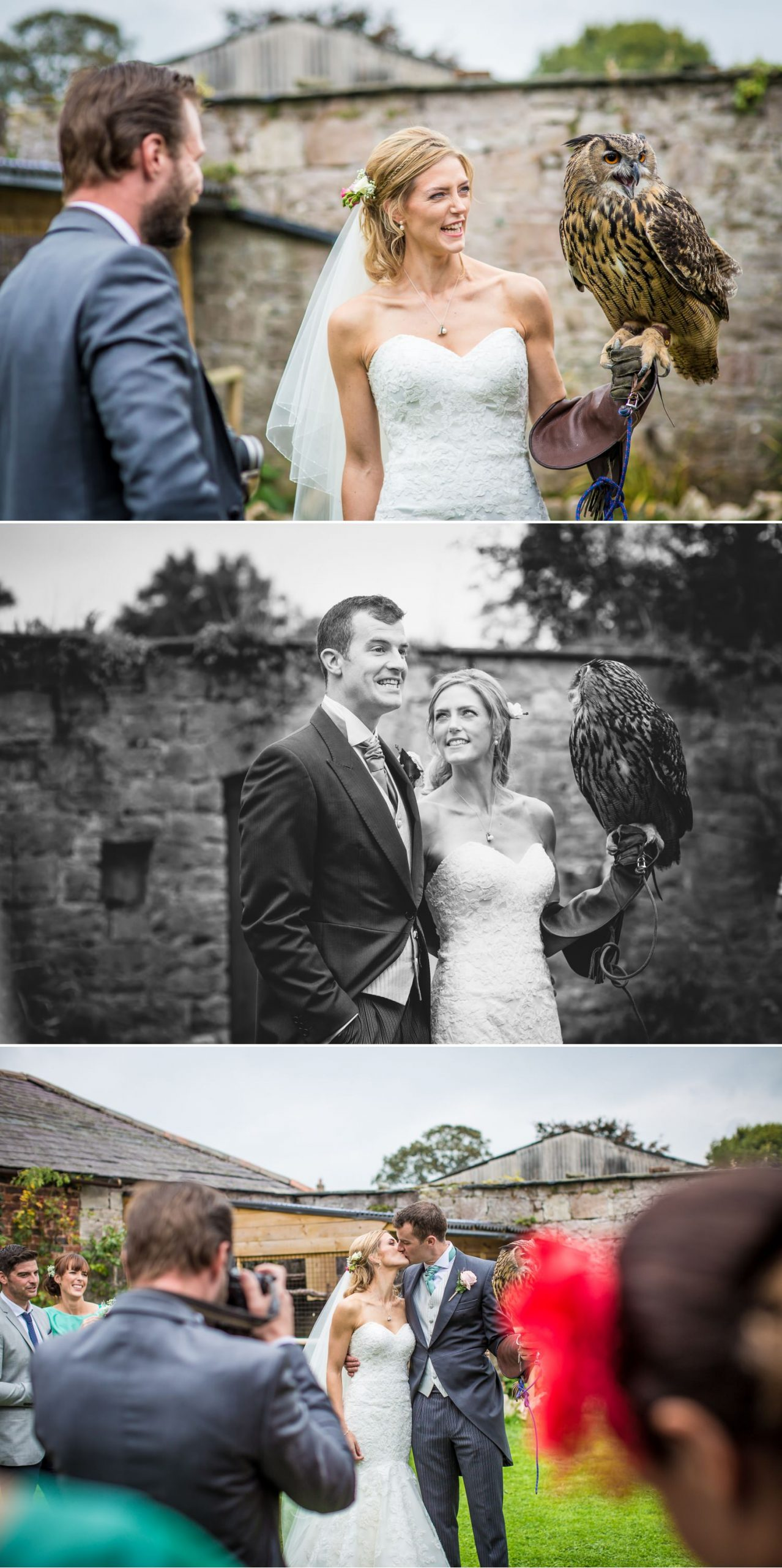Pentre Mawr Country House Wedding Photograph of bride holding an owl