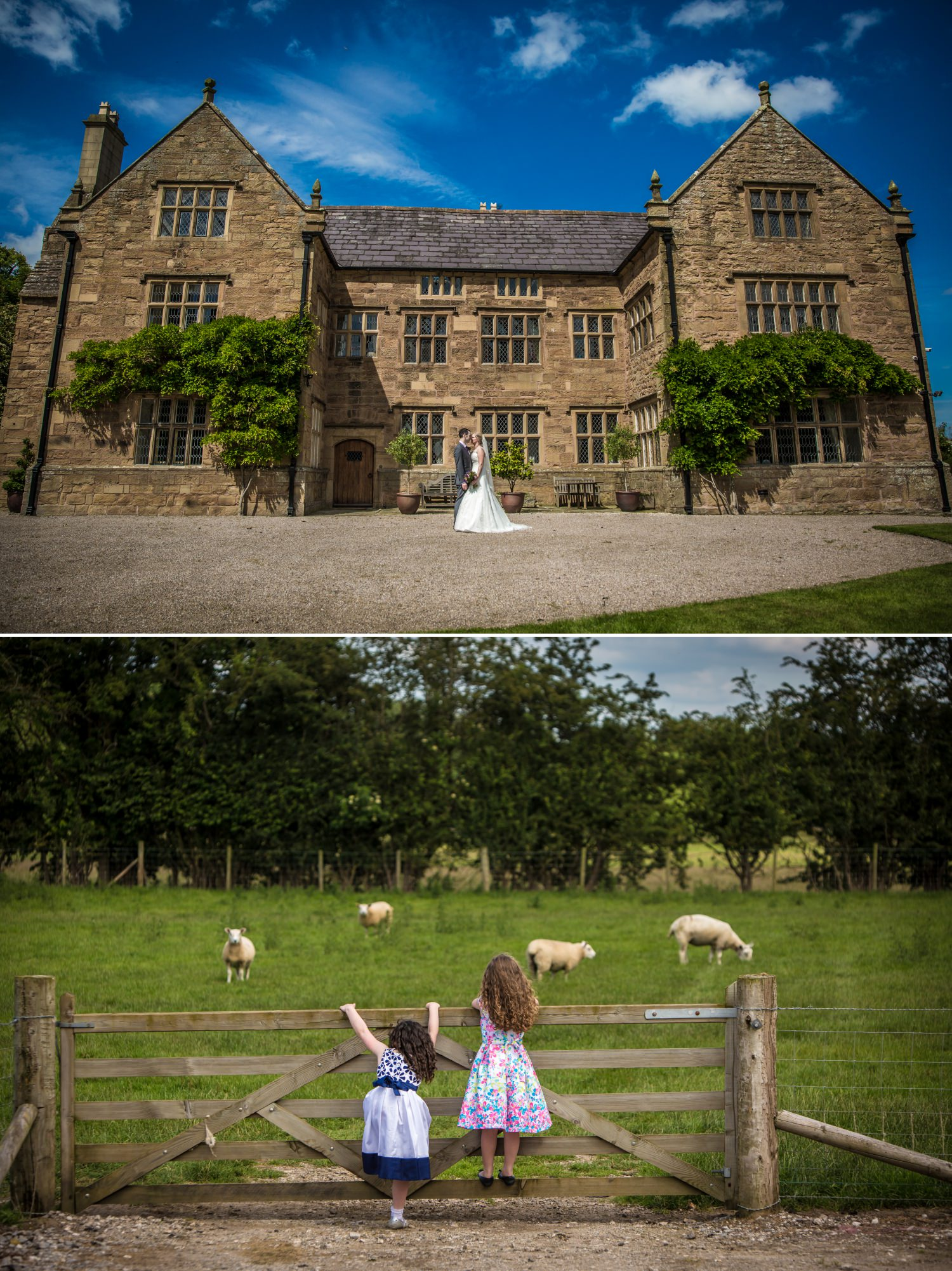 Wedding photographer at Pentrehobyn Hall
